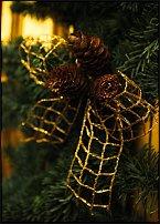 www.floristic.ru - Флористика. Рождество Христово