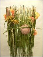 www.floristic.ru - Флористика. Mark Pampling-Марк Памплинг