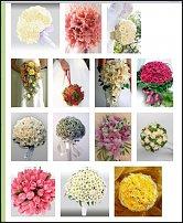 www.floristic.ru - Флористика. Авторское право