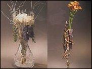 www.floristic.ru - Флористика. ЙО ДИРАРТ