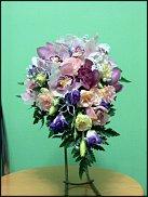 www.floristic.ru - Флористика. С.....