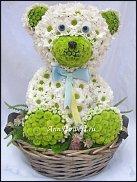 www.floristic.ru - Флористика. К.....