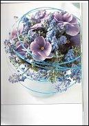 www.floristic.ru - Флористика. Незабудка (Мyosotis)