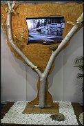 """www.floristic.ru - Флористика. выставка """"Ландшафтная архитектура"""".Москва."""