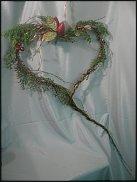 www.floristic.ru - Флористика. Мхи (лат. Bryophyta)