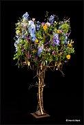 www.floristic.ru - Флористика. Tage Andersen