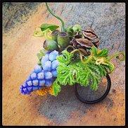 www.floristic.ru - Флористика. Francoise Weeks