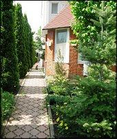 www.floristic.ru - Флористика. Фотографии вашего сада