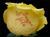 www.floristic.ru - Флористика. Надписи на живых цветах