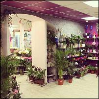 www.floristic.ru - Флористика. Тотальная распродажа!!!