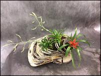 www.floristic.ru - Флористика. Береста как флористический материал
