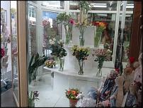 www.floristic.ru - Флористика. Продажа