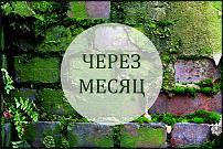 www.floristic.ru - Флористика. Слёт флористов. Эпизод II