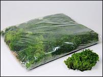 www.floristic.ru - Флористика. стабилизированный мох