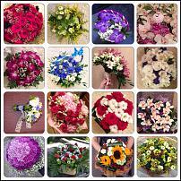 www.floristic.ru - Флористика. Ищу подработку флористом или сотрудничество на разовые заказы,проекты