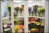 www.floristic.ru - Флористика. продам Холодильник-витрина для цветов