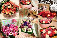 www.floristic.ru - Флористика. Ищу вакансию флорист-помощник