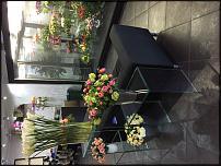 www.floristic.ru - Флористика. Холодильная камера люкс!