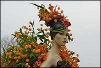 www.floristic.ru - Флористика. Сандерсония-Sandersonia
