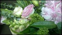 www.floristic.ru - Флористика. Ищу работу!