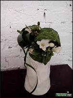 www.floristic.ru - Флористика. Флорист. Москва.