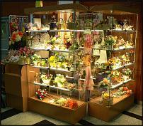 www.floristic.ru - Флористика. Отдам , самовывоз