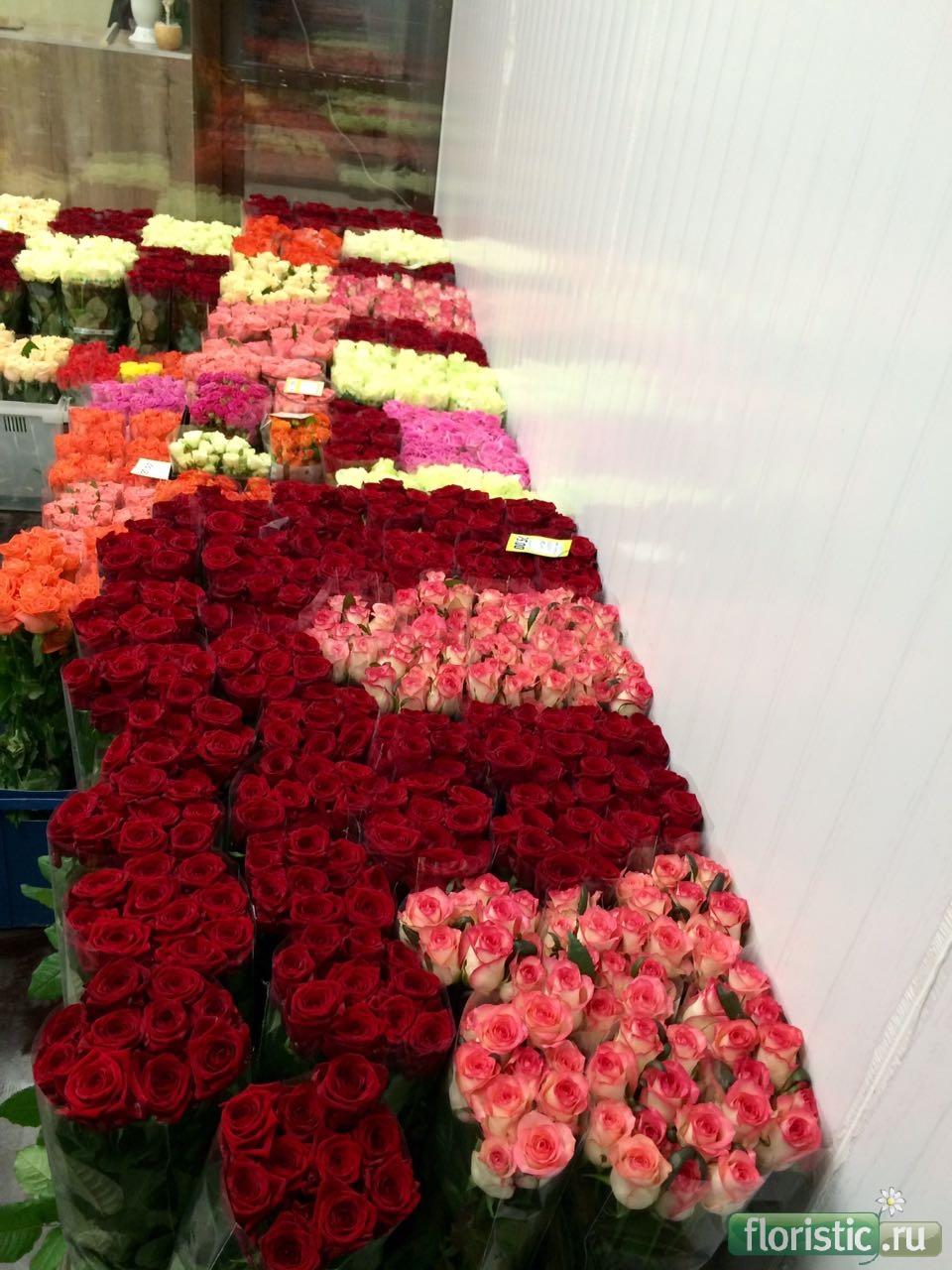 Оптовый магазин цветов азалия на полежаевской — photo 9