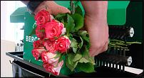 www.floristic.ru - Флористика. Продам машинку для чистки стеблей