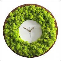 www.floristic.ru - Флористика. Живой мох в интерьере:идеи использования в декорировании