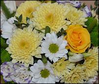 www.floristic.ru - Флористика. Работы форумчан