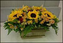 www.floristic.ru - Флористика. Ищу работу флористом в будние дни