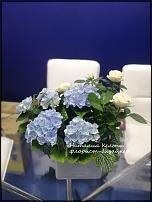 www.floristic.ru - Флористика. Гортензия