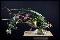 www.floristic.ru - Флористика. Андрей Калашников