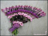 www.floristic.ru - Флористика. Финская флористика