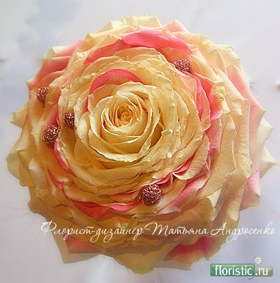Флористика: популярный флористический форум - Показать сообщение отдельно - Гламелия
