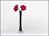 www.floristic.ru - Флористика. ВЕСЕННЕЕ НАСТРОЕНИЕ.