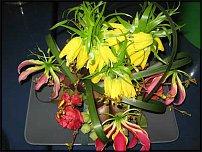www.floristic.ru - Флористика. Elso Post (Элсо Пост)