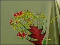 www.floristic.ru - Флористика. Показ w Moskwie Zygmunta Sieradzana