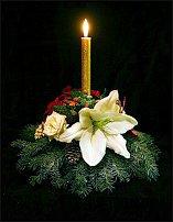 www.floristic.ru - Флористика. Как сделать грамотное портфолио и флористический сайт?